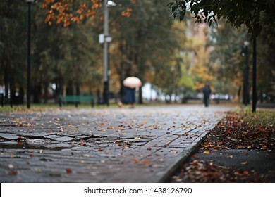 Autumn rain in the park during the day