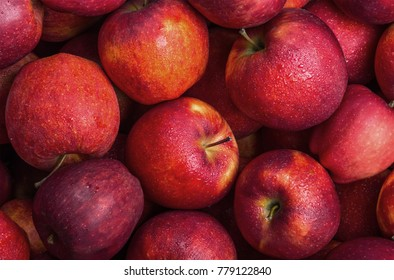 Autumn Red Apples