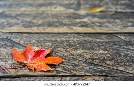 Autumn red maple leaf on wooden textured road background in the park. Autumn decorative background concept.
