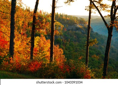 Autumn in the Red River Gorge in Kentucky explode in fiery colors