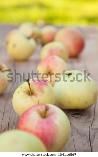autumn - ripe apples of old variety on rough wooden surface