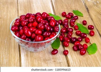 Autumn ripe cornel berries on wooden table. Studio Photo