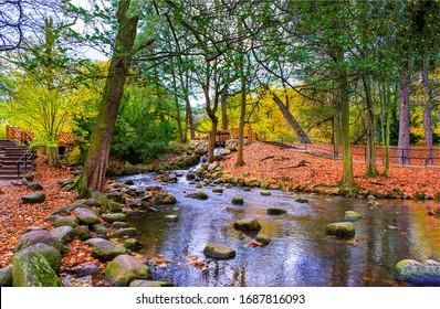 Autumn river creek in forest park in October landscape