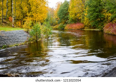 Autumn river water landscape. Forest river in autumn season. Autumn forest river water. Autumn river forest view