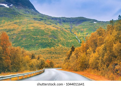 Autumn road in mountains. Colorful autumn landscape with narrow empty road.