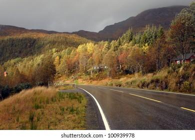 autumn road at the norwegian mountains