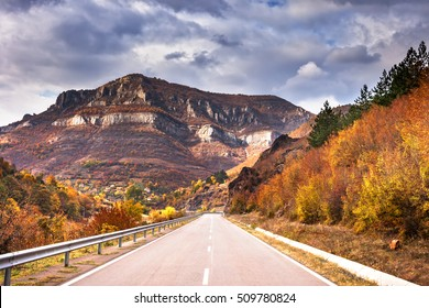 Autumn road/Autumn road/Autumn road