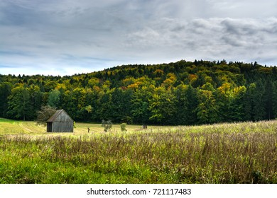 Autumn rural landscape.
