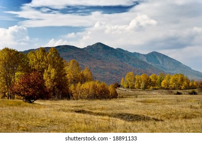 autumn rural landscape with forest and mountains