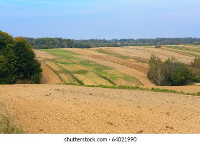 Autumn rural landscape with trees, blue sky and white clouds