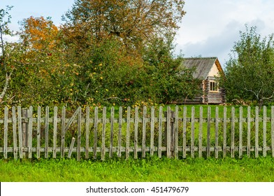Autumn rural landscape - wooden house with fence and apple garden in Pskov region, Russia