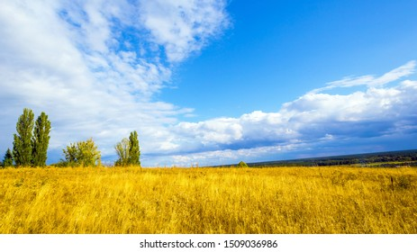 Autumn rural nature landscape with steppe grass and sky