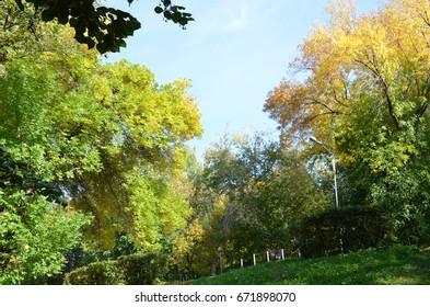 Autumn in russian Park
