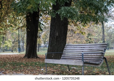 Autumn sadness of upcoming cold and rawness