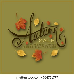 Autumn sale hand drawn lettering composition with autumn leaves. Handwritten calligraphy design on color background for promotions and sales.