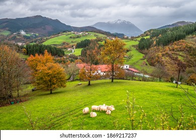 autumn scene of aramaio valley, basque country