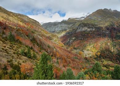 Autumn scene in Bujaruelo valley close to Ordesa and Monte Perdido National Park, Huesca province, Spain