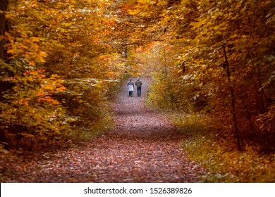 Autumn scene, a couple walking on the alley in the fall forest surrounded by yellow, red orange leaves. Selective focus, blurred foreground.