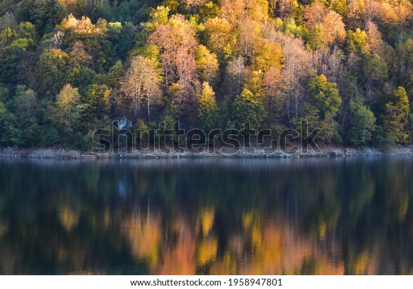 autumn-scene-forest-reflection-water-600