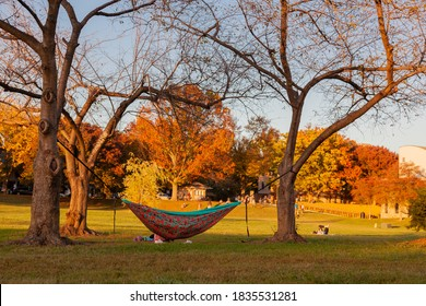 An autumn scene in a park with a colorful hammock set between trees and someone is sleeping in it.  People are picnicking and trees have fall colors. It is a sunset landscape in Baker Park, Frederick.