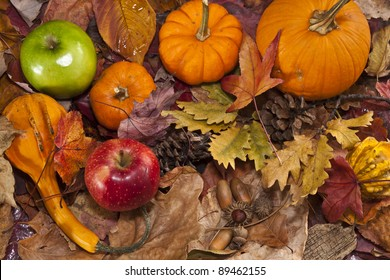 Autumn scene with pumpkins and fallen leaves