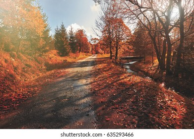 Autumn scene with road. Road in autumn mountains. Beskid Mountains. Poland