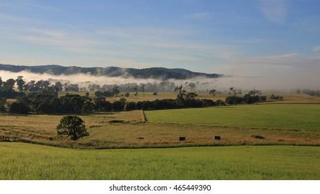 Autumn scene in rural New South Wales, Australia.