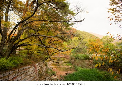 Autumn scenery in and around Beopjusa temple