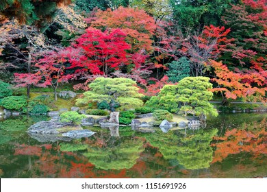 Autumn scenery of beautiful Sento Imperial Palace ( Royal Villa Park ) in Kyoto, Japan, with colorful maple trees and green pines reflected in the quite water of a lake in a peaceful zen atmosphere