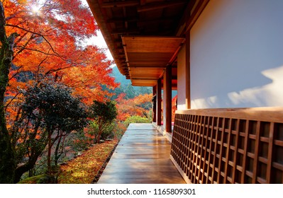 Autumn scenery of fiery maple trees viewed from Engawa (veranda or terrace-like floor) under the wooden eave of a traditional Japanese architecture in majestic Kozan-ji Buddhist Temple in Kyoto, Japan