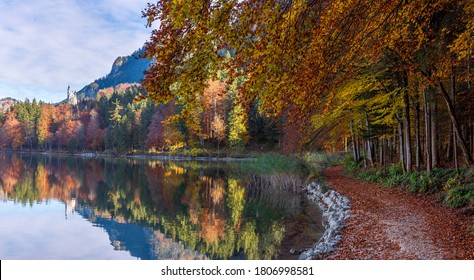Autumn scenery near the lake Alpsee in the bavarian alps, near the german city Fussen. Panorama with the bavarian forest in autumn colors