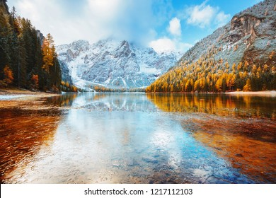 Autumn scenery of peaceful alpine lake Braies (Pragser Wildsee). Location Dolomiti Alps, national park Fanes-Sennes-Braies, Italy, Europe. Scenic image of Italian Alps. Discover the beauty of earth.