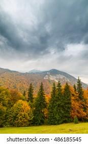 Autumn scenery in remote rural area in Transylvania