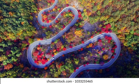 The autumn scenery of the Republic of Korea. I shot with a drone. The roads are full of autumn leaves every bend.