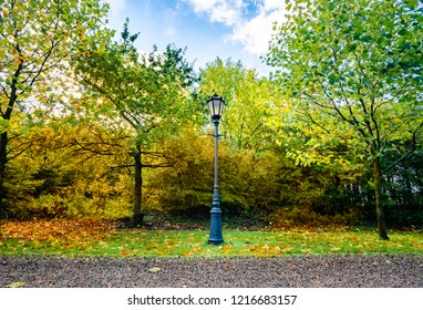 Autumn scenery with a retro street lamp in a park with colorful leaves in the fall