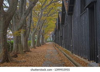 Autumn scenery of the Sankyo warehouse in Sakata city, Japan