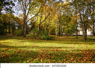 Autumn scenery at sunny day in Saint Petersburg, Russia.