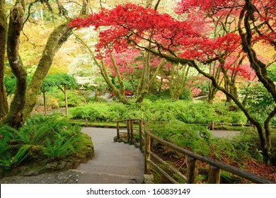 autumn scenes in Japanese Garden of the national historical site Butchart Gardens, Vancouver island, British Columbia, Canada