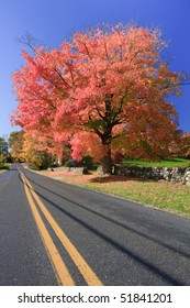Autumn scenic view of an empty road in Connecticut, USA