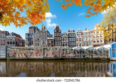 Autumn season at Amsterdam street traditional ancient dutch colorful buildings and flower market on Single canal in Amsterdam, Netherlands.