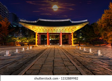Autumn season of Deoksugung Palace at night Seoul  South Korea