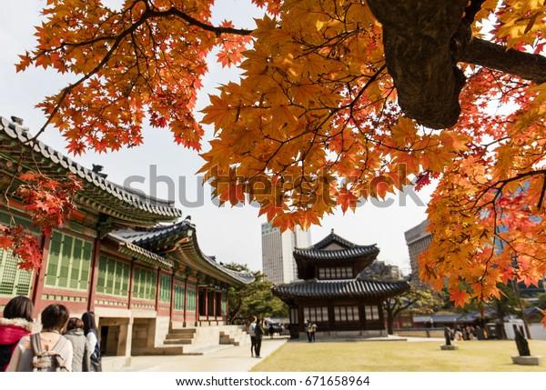Autumn season of Deoksugung Palace in Seoul,South Korea.