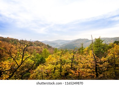 autumn season, hilly and colorful landscape from the Thuringian Forest, copyspace