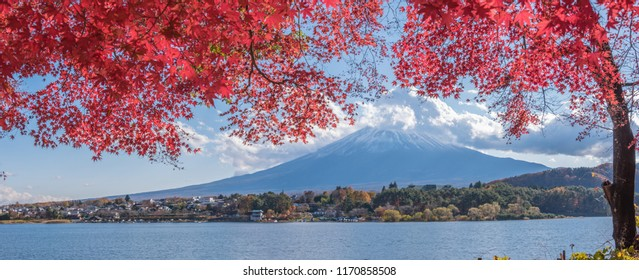 Autumn Season and Mountain Fuji at lake Kawaguchiko, Japan