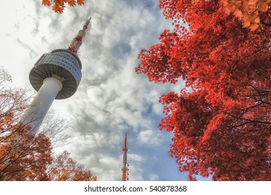 Autumn at Seoul Tower,Autumn leaf background ,South Korea.
