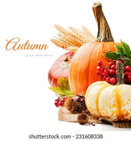 Autumn setting with various pumpkins and rowan berry