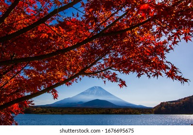 Autumn at Shojiko lake with Mt.Fuji background.