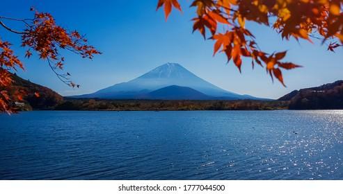 Autumn at Shojiko lake with Mt.Fuji background.
