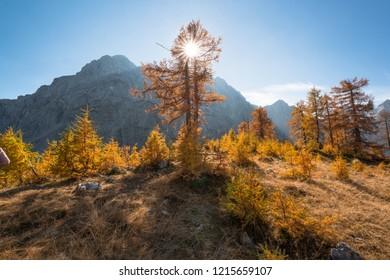 Autumn at Slemenova Spica in the Julian Alps mountains