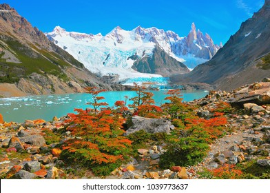 Autumn small trees by the lake near Cerro Torre mountain. Los Glaciares National park. Argentina.
